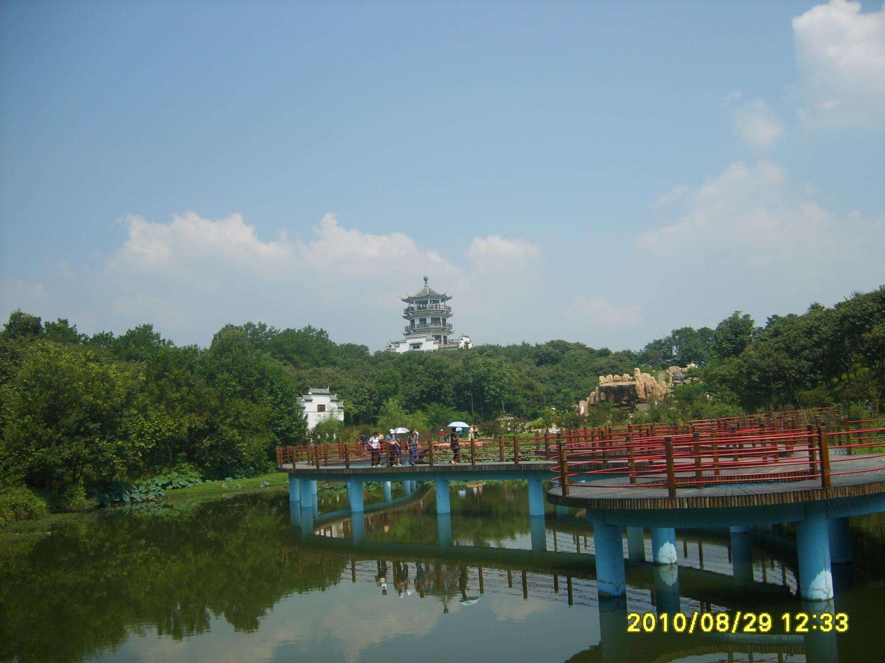 南湾湖风景(茶岛)