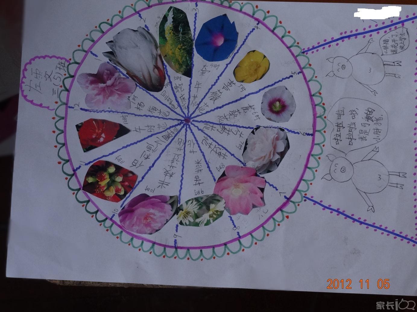 三年级花钟简笔画