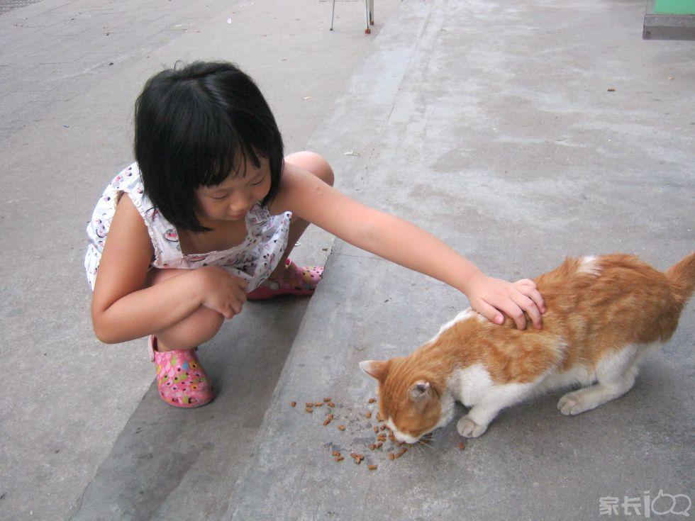 小孩和流浪猫狗接触,怎么看?