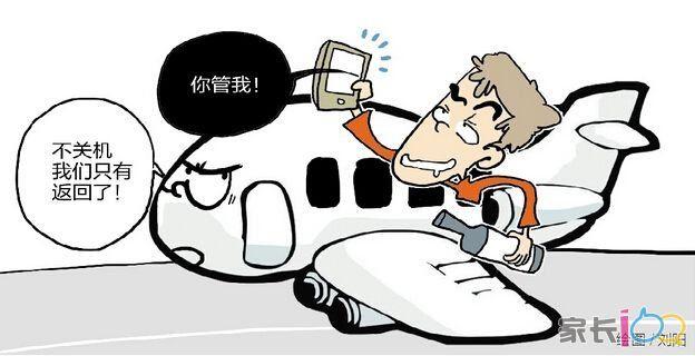 醉酒男手机打飞机, 飞机迫降