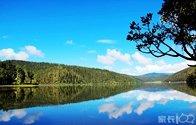 云南行(五)——香格里拉普达措国家公园.jpg