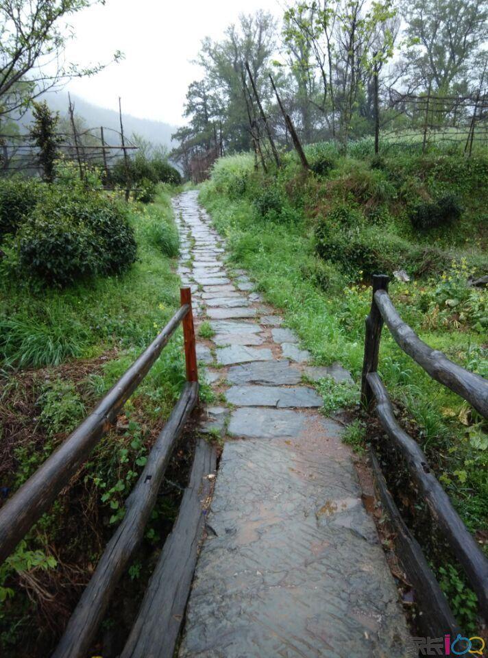 石城平安村乡间小桥和小路.jpg