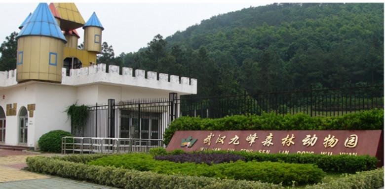【100福利社】no 59 六一武汉九峰森林动物园活动提前