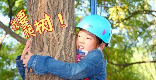 五一劳动节小勇士生存挑战之蜘蛛侠攀树体验活动火热招募中